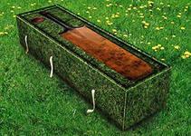 креативные гробы из экологических материалов