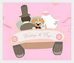 открываем сервис для собак чьи хозяева решили заключить брак