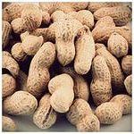 выращивание арахиса - идея для бизнеса
