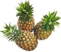 идея заработка на выращивание и продаже ананасов