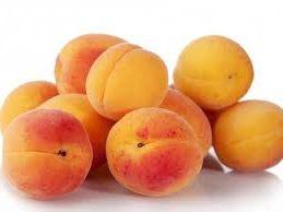 начинаем бизнес на выращивании и продаже абрикосов