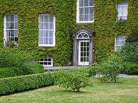 дизайнерское старение частных домов и  коттеджей при помощи плюща и дикого винограда